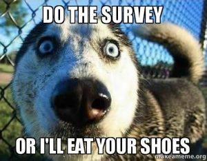 Fait le sondage, ou je mange tes chaussures !